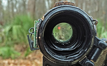 Buying Guide of Vortex Optics SPARC Red Dot Sight